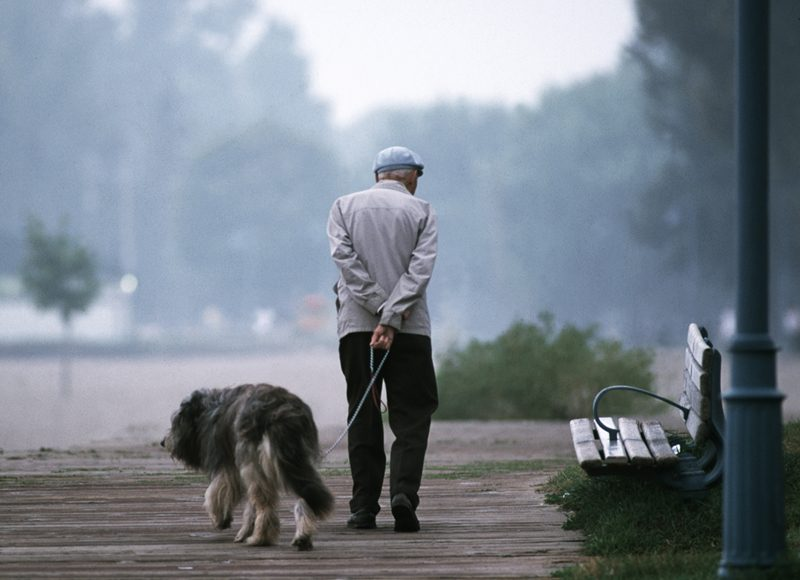 pas i dug život